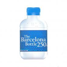 Bottiglia rPET| 250 ml |Tappo piatto | 1107101