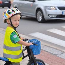 Gilet di sicurezza per bambini | Taglia unica