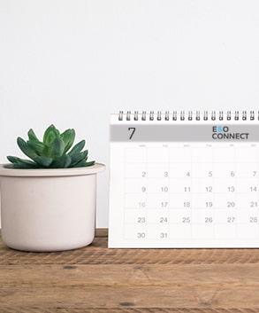 Calendari da tavolo maxilia
